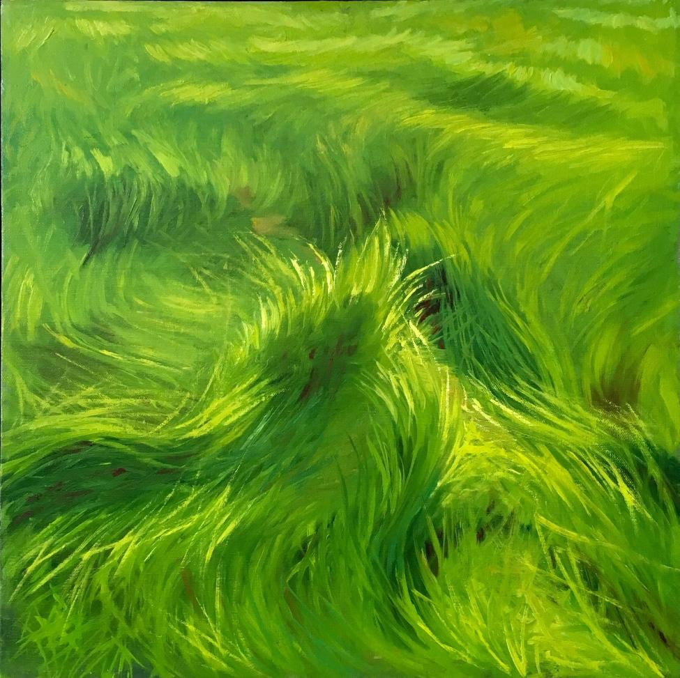 Marsh Grasses.jpg
