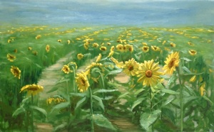 sunflowers sized for wordpress